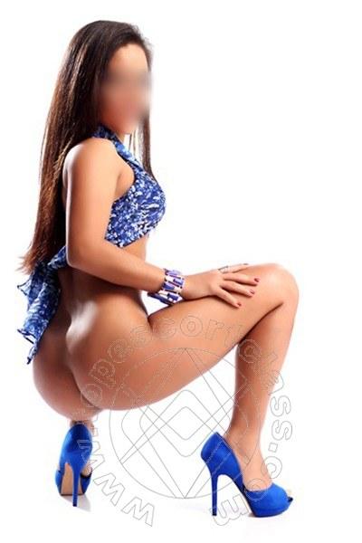 Amy Sexy  FELTRE 3512851066